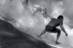 Guinness-surfer